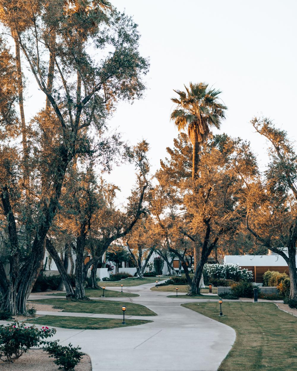 NinaTekwani.com_Andaz Scottsdale_9.jpg