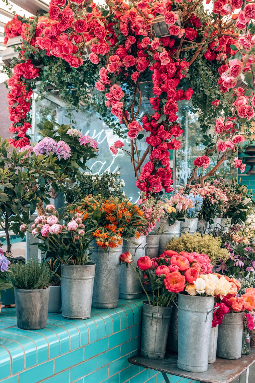 8732-ninatekwani-florals.jpg