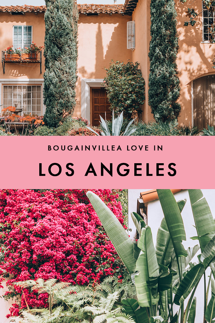 I love flowers and pretty houses, and LA isn't short of those. Looking for some serious home inspiration? Check out this pictures of LA in full bloom!