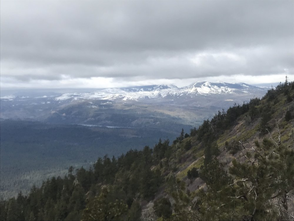 View from the Southwest side of Black Butte. Photo by Iris Diez