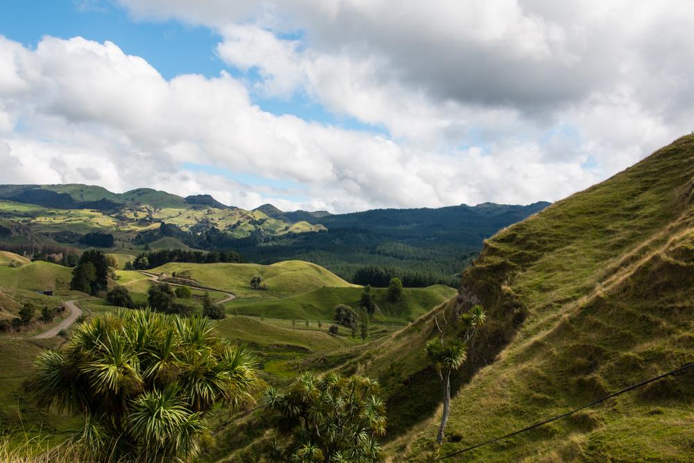 Tutira, NZ.