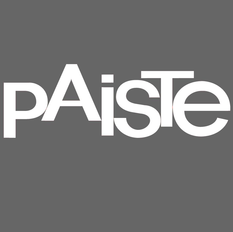 Paiste_gray.png