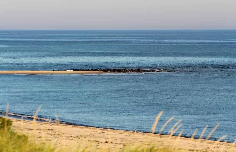 the seal sandbar from a distance