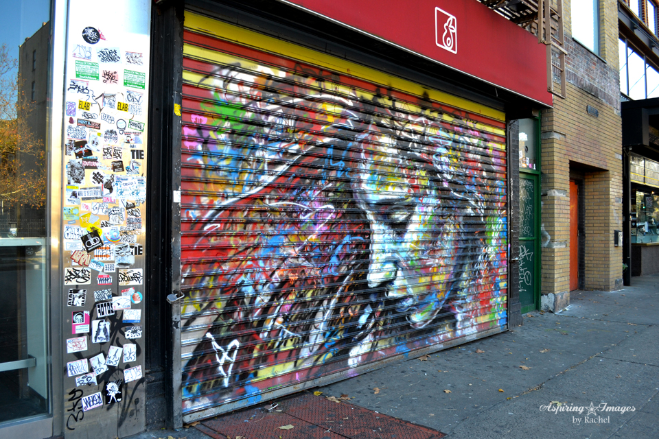 2010_Dec_NYC_Graffitti_Door_2-web