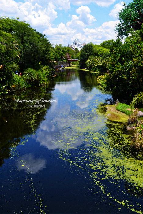 AspiringImagesbyRachel_Disney-AnimalKingdom-EverestontheWater