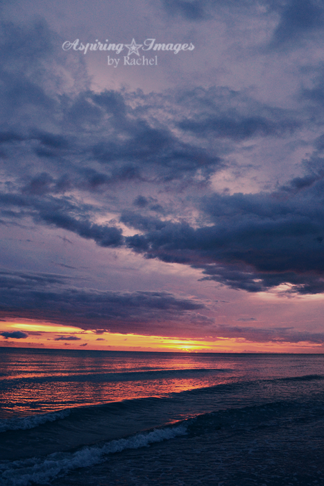 AspiringImagesbyRachel-BeachSunset-VeniceBch-Vertical-PurpleOrange