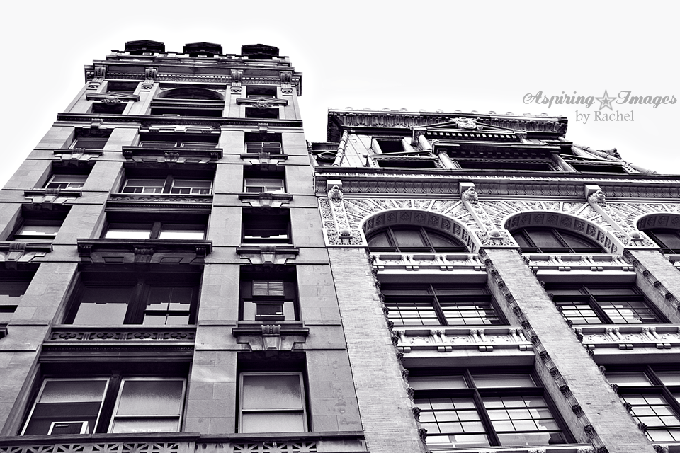 NYC-Bldg-TwoFacades-BnW
