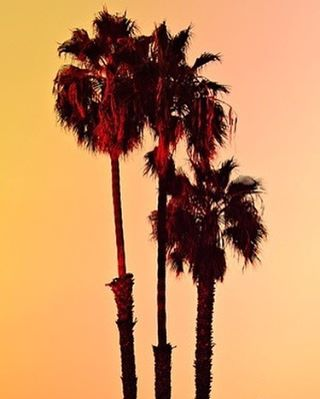 It might be cliche but I'm California dreaming.