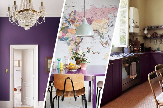 purple interior_cocoandmingo
