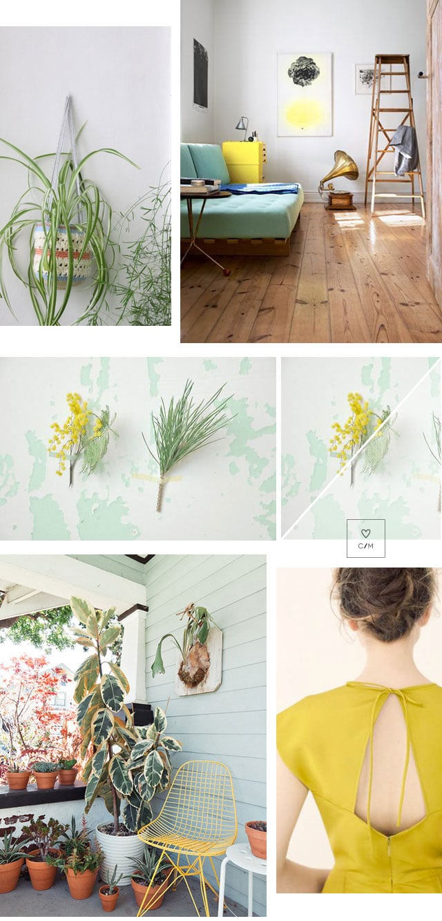 Nature's greenery_interior inspiration_coco and mingo