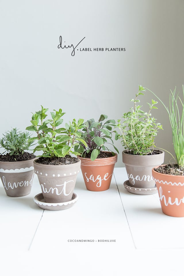 DIY Labeled Indoor Herb Planters // BodhiLuxe — Jessica Keala