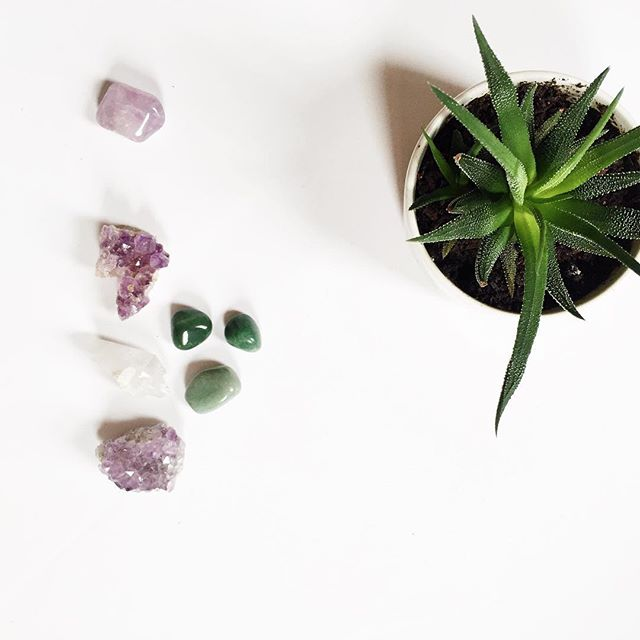 Monday, first of May vibes. Organizing my crystal collection and figuring out how to keep my plants alive when I'm on vacay for 2 weeks.🤔🌿🔮