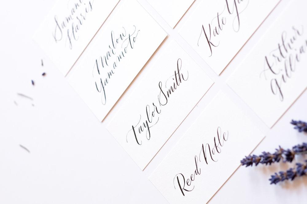 The Letter Muse_Portfolio.jpg