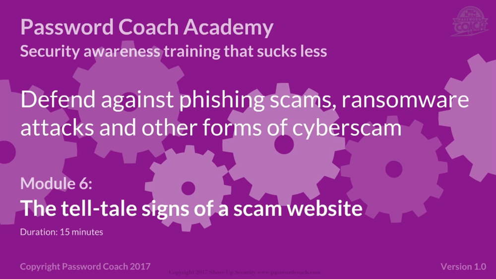 Module 6 – The tell-tale signs of a scam website