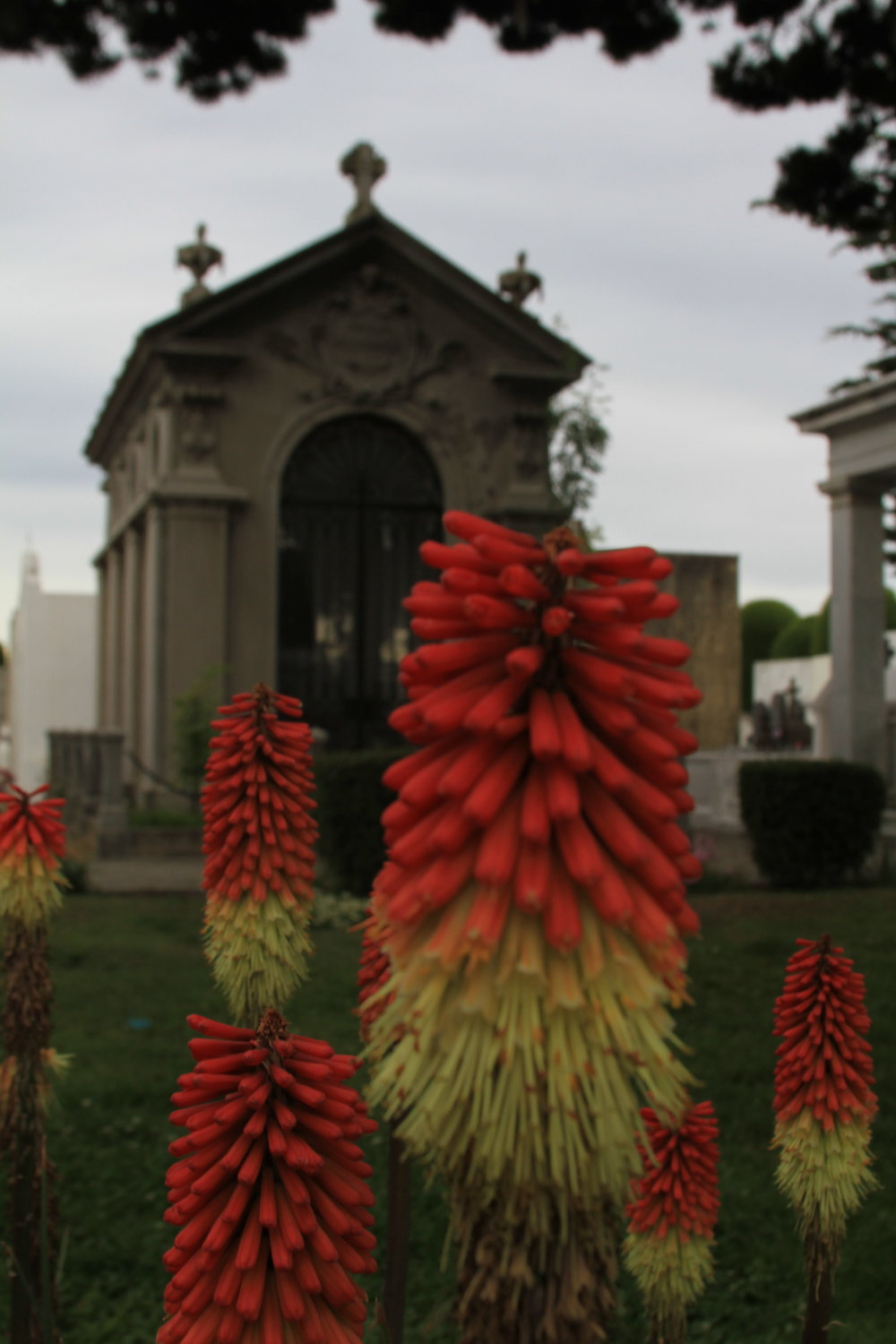 Cemetary in Punta Arenas