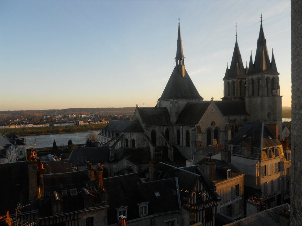 View of the Cathedrale Saint-Louis in Blois