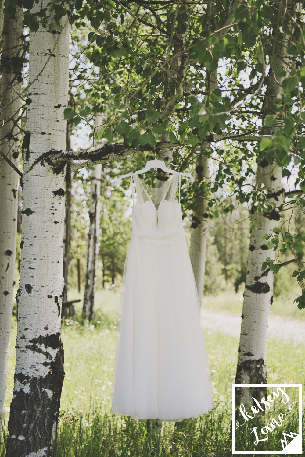 Rustic Montana Wedding_Grey Wolf Ranch_Kelsey Lane Photography