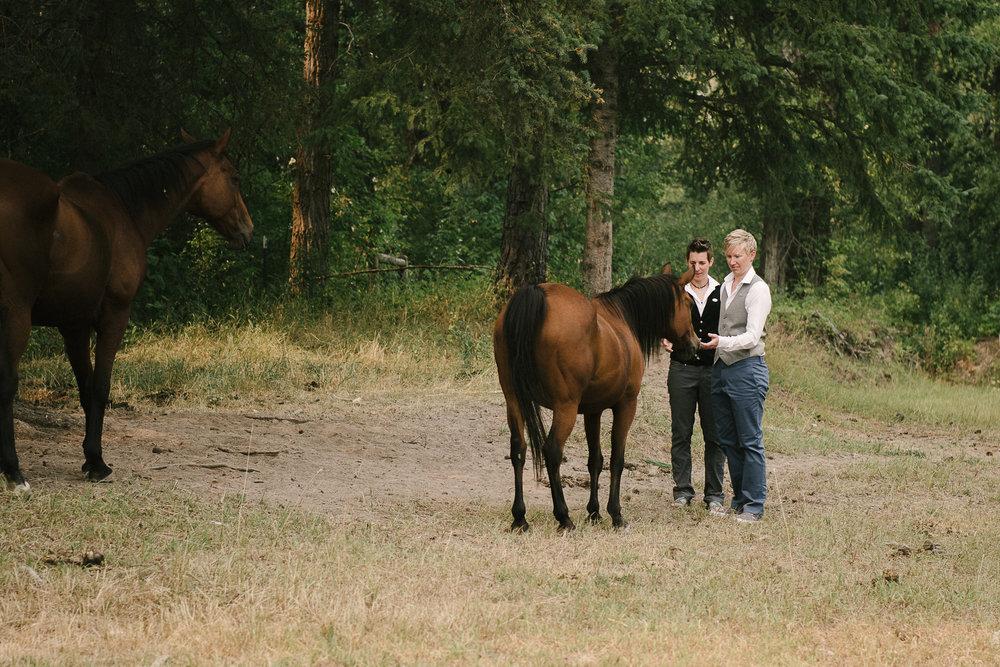 Glacier Montana Wedding_Elly Maurer + Frankie Dashiell Wedding_Beautiful Outdoor Wedding_Kelsey Lane Photography-5146.jpg