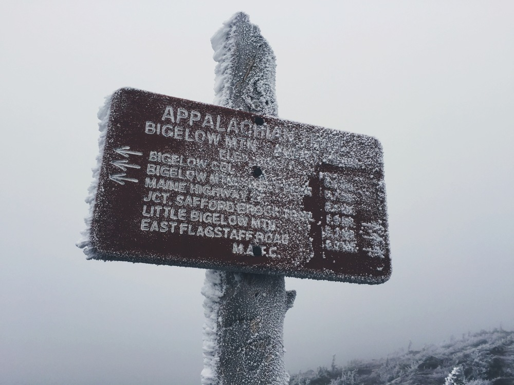 The ice-blasted summit of Avery Peak (#8 on map elevation profile).