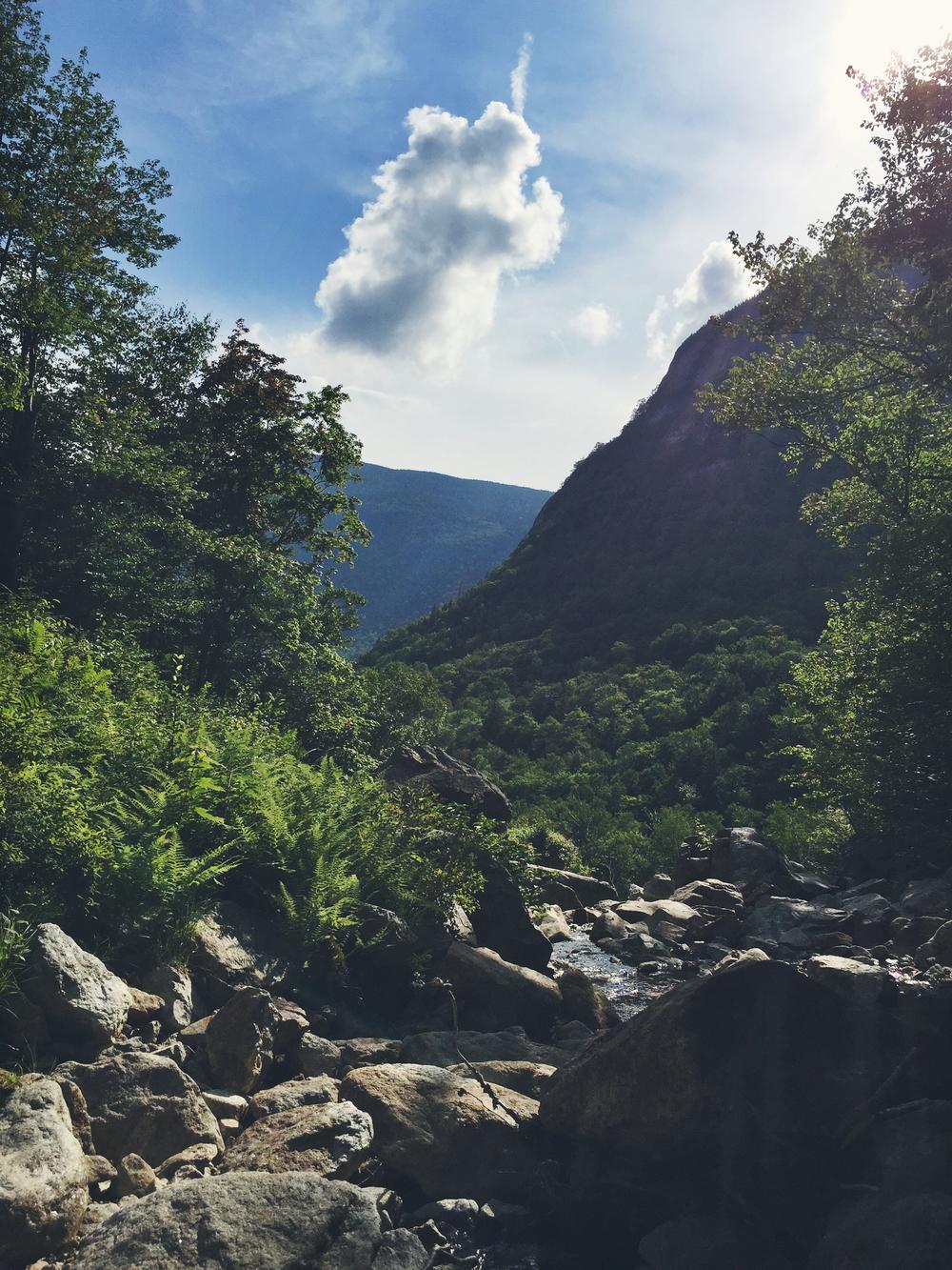Scenery around Silver Cascades.