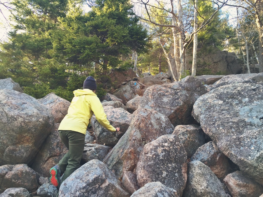 Moose makes her way through the rock scree at the base of South Bubbles.