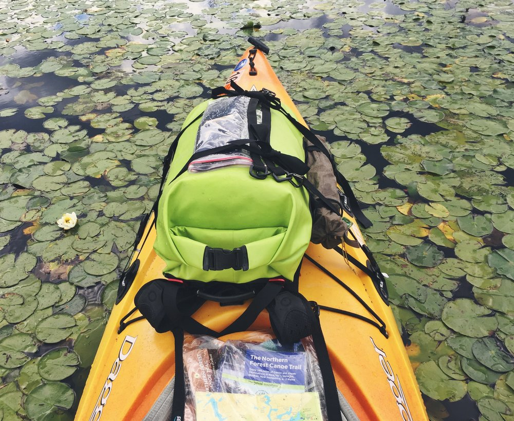 Paddling through the lilies on Browns Tract Inlet
