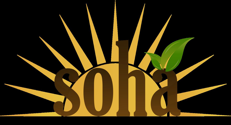 About us — Soha LLC