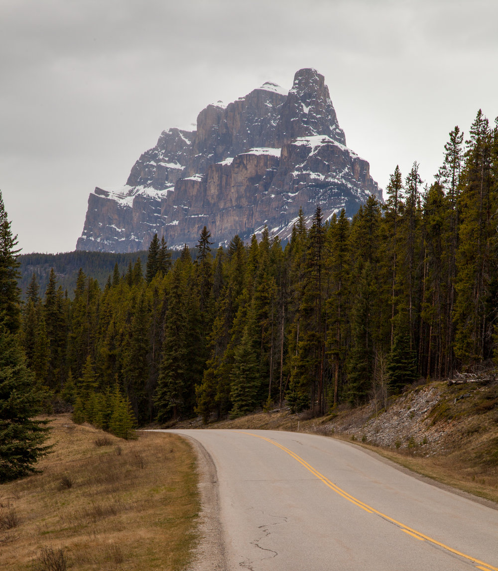 View of Castle Mountain on the Bow Valley Parkway