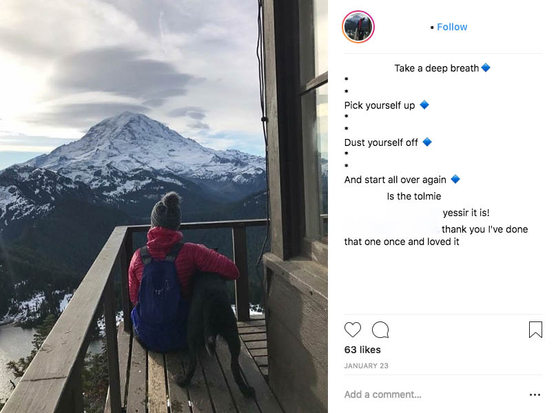 A popular hike in Mount Rainier National Park that also doesn't allow dogs. Instagram photos like this pop up all the time, please don't be this person.