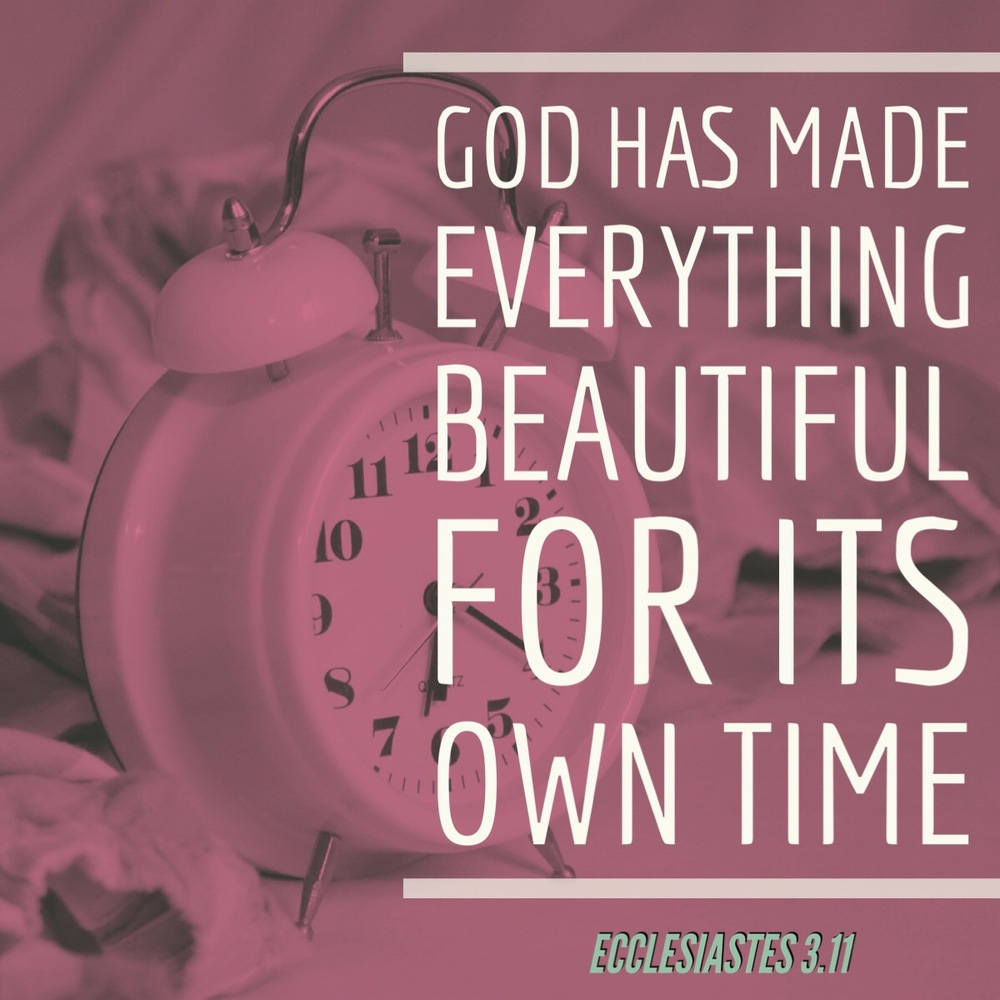 Yet God has made everything beautiful for its own time. He has planted eternity in the human heart, but even so, people cannot see the whole scope of God's work from beginning to end - Ecclesiastes 3.11