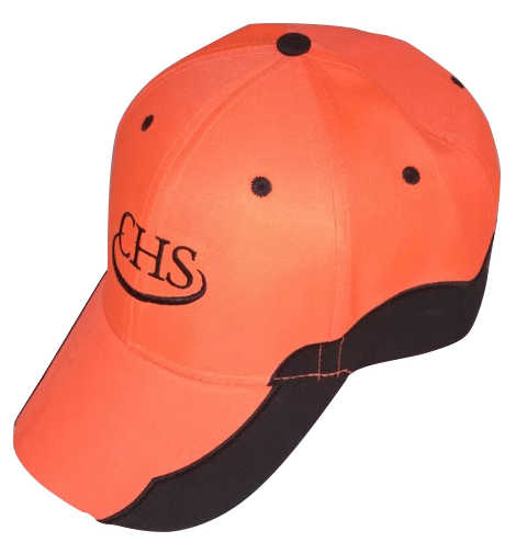 chs orange.jpg