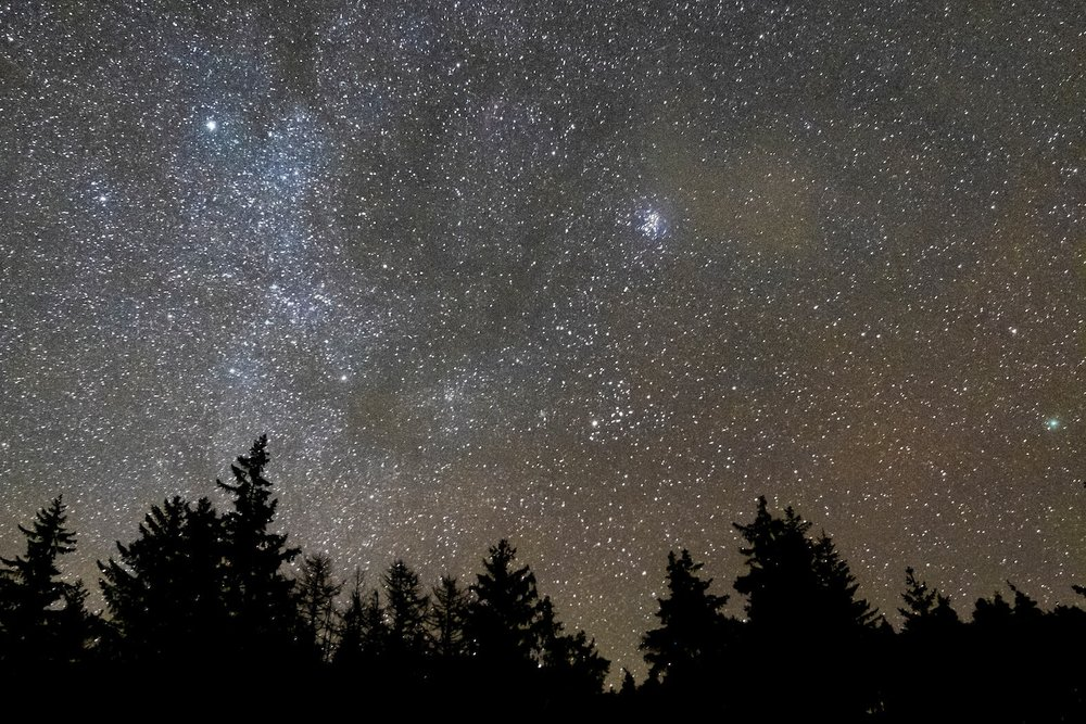 03.Relax & Recharge - Stargazing, art and photography workshops, tree planting, guided walks