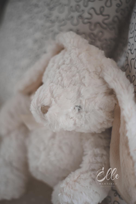 newborn ohio natural light photographer -2.jpg