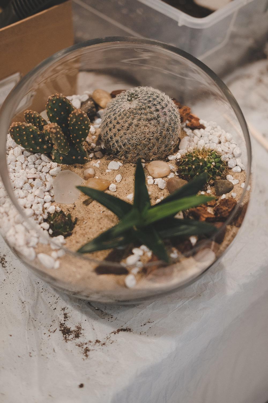 elle martinez photography with  planthropy-25.jpg