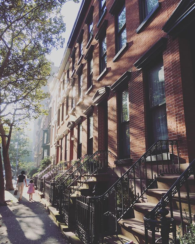 The crazy humidity is doing all sorts of good stuff to the light this morning ✨#NYC #brooklyn #saturdaymorning #thatcosthowmuch