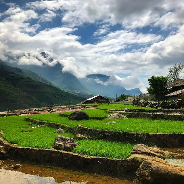 We arrived in Vietnam on Tuesday evening, it was looking like we brought the Irish weather with us until yesterday - needless to say we got roasted on our walking tour of the rice padi's up in Sapa. It's crazy to see how something that looks so beautiful can be so tied up in hardship and poverty. #worldscollide #landscape_captures #naturelovers #landscapephotography #beautiful #travelphotography #travelgram #naturephotography #natureaddict #ig_worldclub 🍀