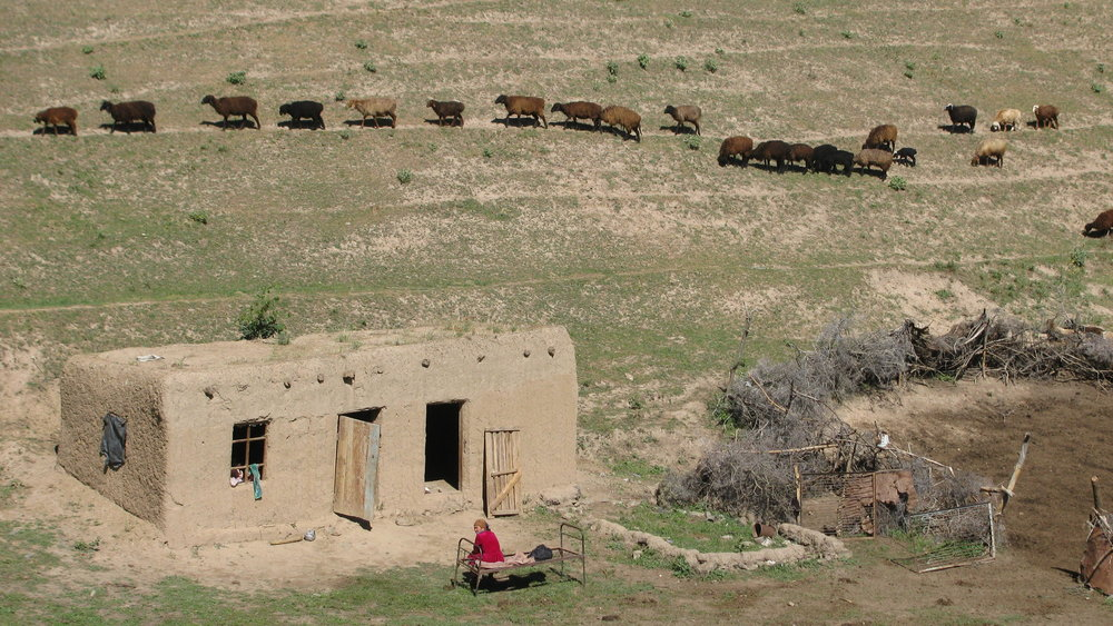Summer herding homestead, Malguzzar Mountains, Uzbekistan