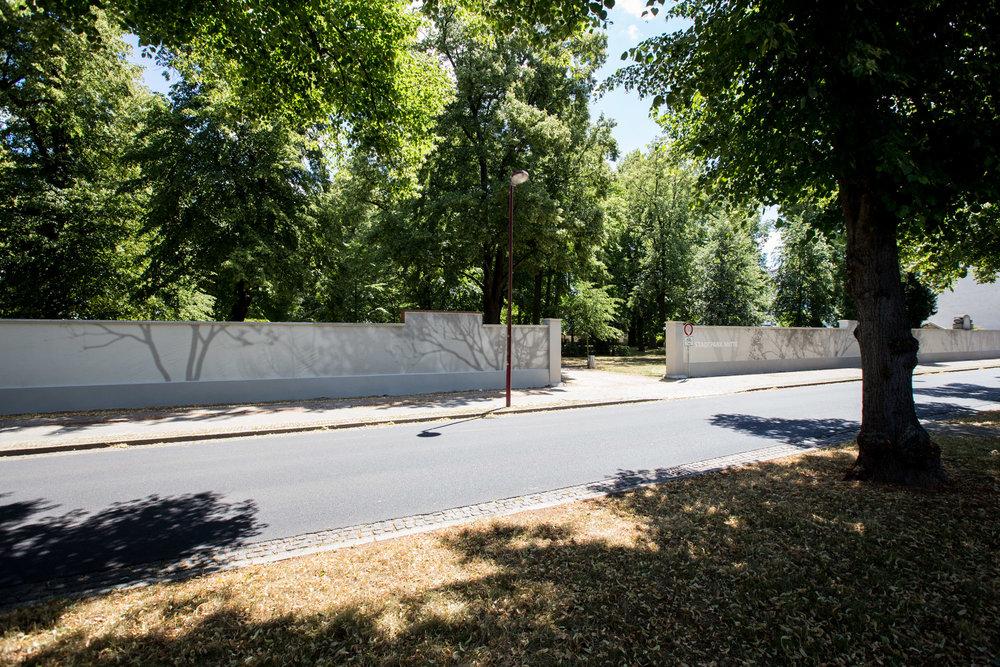 Rasterbild_Schatten_Bäume_Baum_Forst_Transparent_Wand_Fassade_Straße_Park.jpg