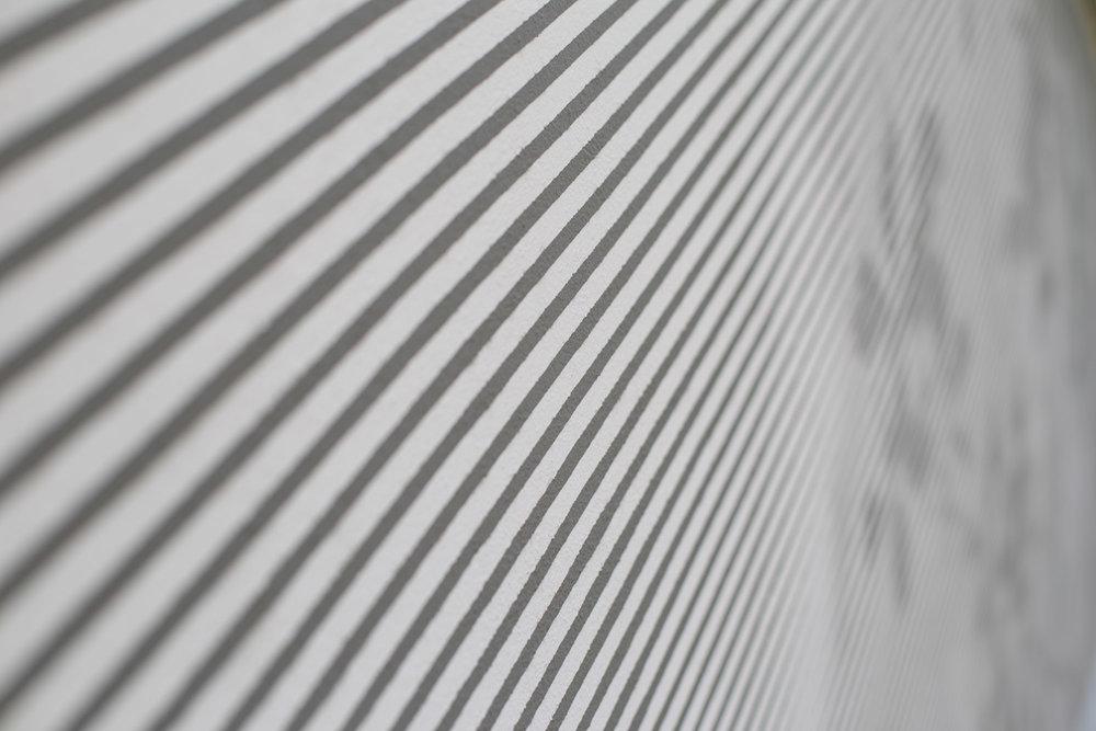 Rasterbild_Schatten_Striche_Baum_schwarz-weiß_Forst_Transparent_Wand_Fassade.jpg