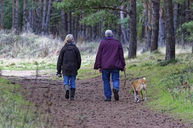 _shoes_Couple_dog_walking_trail_1070076_S.jpg