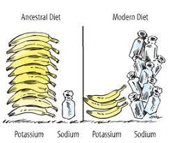 ancestral diet.jpg
