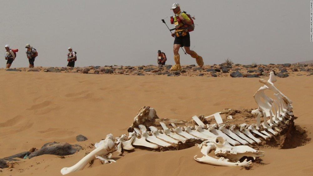desert run.jpg