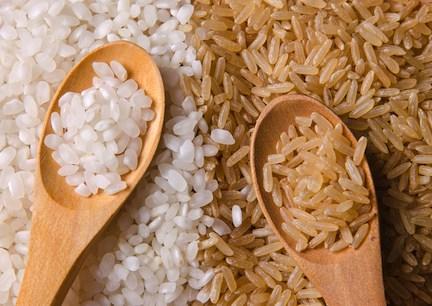 rice pic.jpg