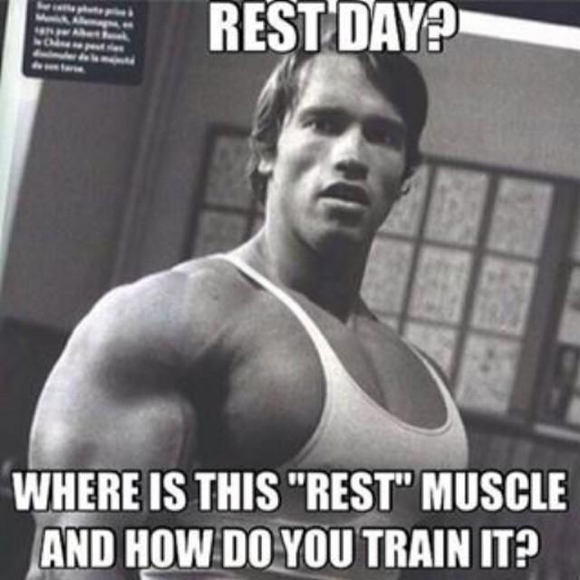 funny rest.jpg