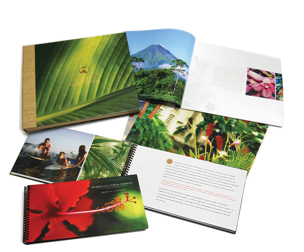 Rosewood Costa Carmel Vision Kit