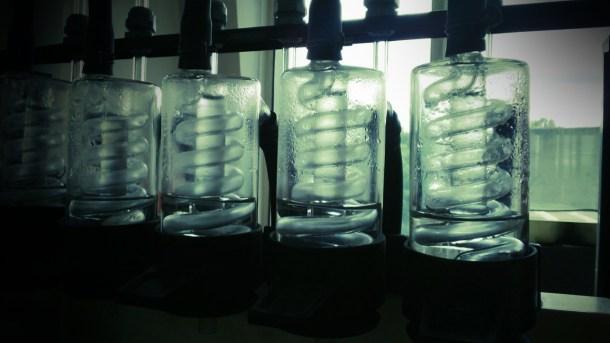 lab-jars.jpg