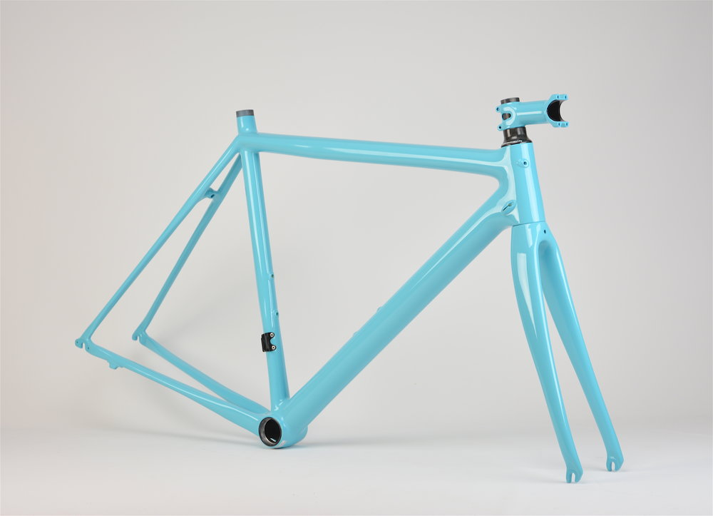 Cannondale Evo Turquoise_0124 copy.JPG