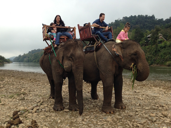 Family fun on elephants