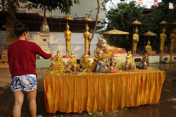 A woman scoops water over dozens of golden Buddha statues