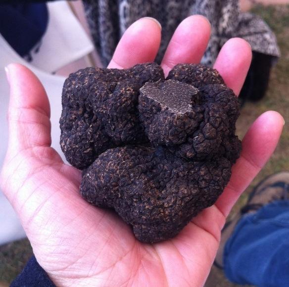 eatdrinklaos-truffles-handful